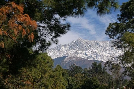 view from circuit house in dharamshala - Travel and Tour Package Itinerary